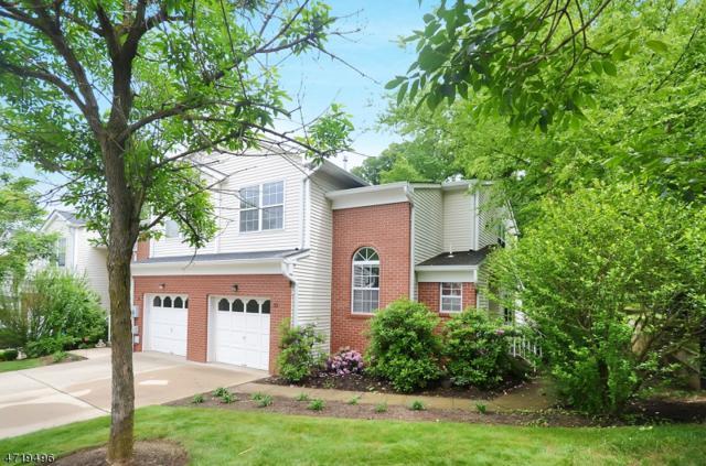 33 Garfield Way, Montgomery Twp., NJ 08540 (MLS #3392993) :: The Dekanski Home Selling Team