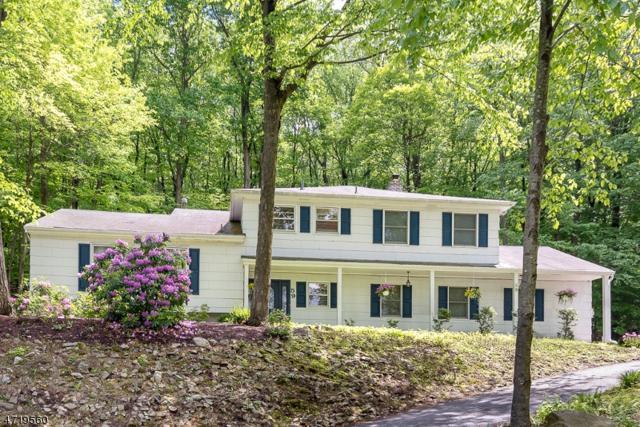 59 Forrest Rd, Randolph Twp., NJ 07869 (MLS #3393069) :: The Dekanski Home Selling Team