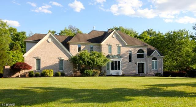 5 Sunnyfield Dr, Clinton Twp., NJ 08801 (MLS #3393116) :: The Dekanski Home Selling Team