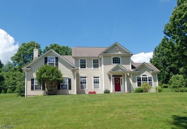 6 Columbine Ct, Raritan Twp., NJ 08822 (MLS #3393130) :: The Dekanski Home Selling Team