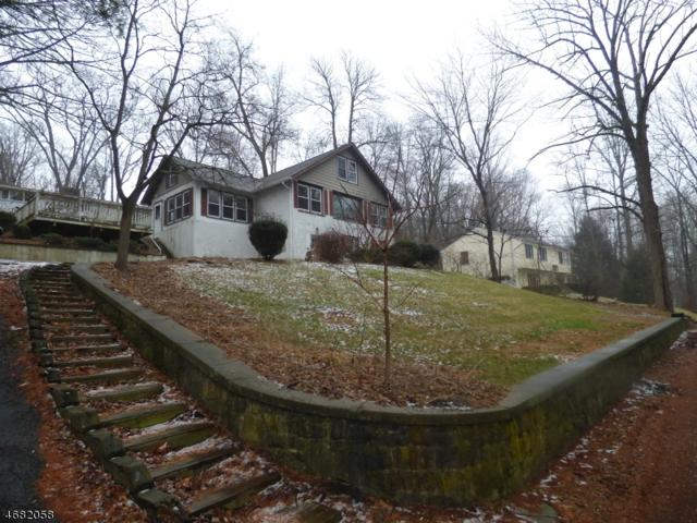 22 Lenape Ave, Andover Twp., NJ 07860 (MLS #3393208) :: The Dekanski Home Selling Team