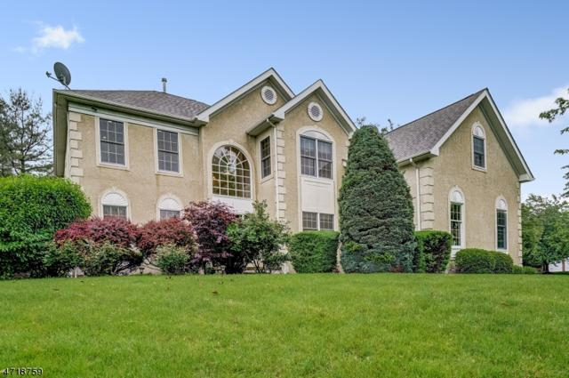 1 Watchung Dr, Bernards Twp., NJ 07920 (MLS #3393497) :: The Dekanski Home Selling Team