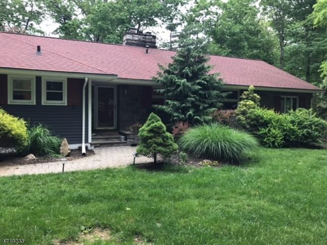 9 Pepperidge Tree Ter, Kinnelon Boro, NJ 07405 (MLS #3393562) :: The Dekanski Home Selling Team