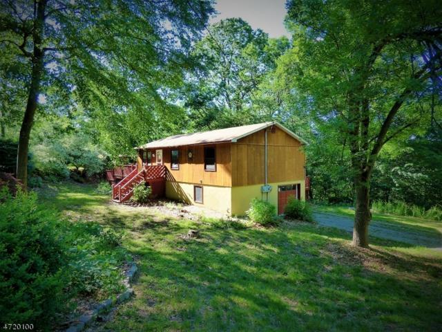 1 Ridge Rd, Wantage Twp., NJ 07461 (MLS #3393591) :: The Dekanski Home Selling Team