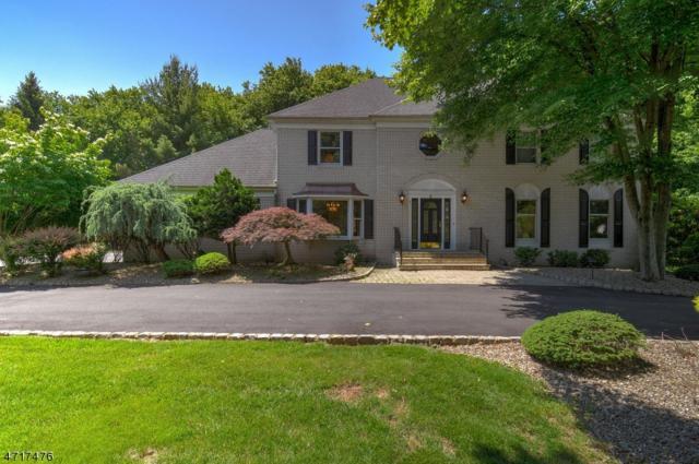 5 Kilmer Dr, Hillsborough Twp., NJ 08844 (MLS #3393681) :: The Dekanski Home Selling Team