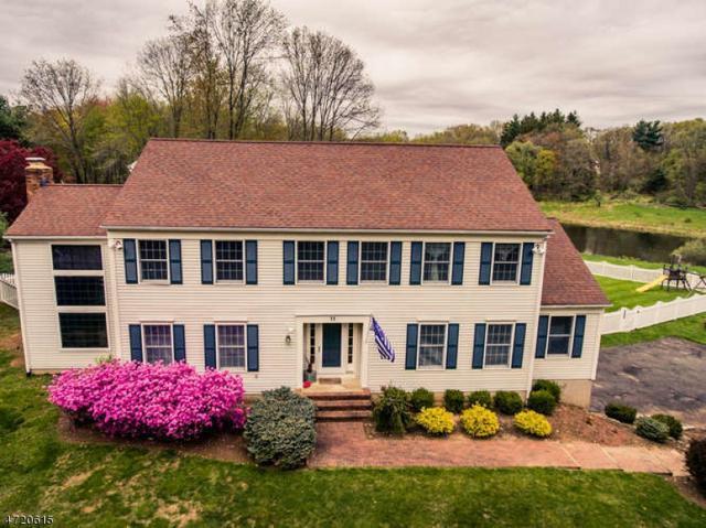 11 Bennington Dr, Mount Olive Twp., NJ 07836 (MLS #3394177) :: The Dekanski Home Selling Team