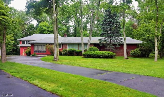 652 Metape Circle West, Bound Brook Boro, NJ 08805 (MLS #3394281) :: The Dekanski Home Selling Team