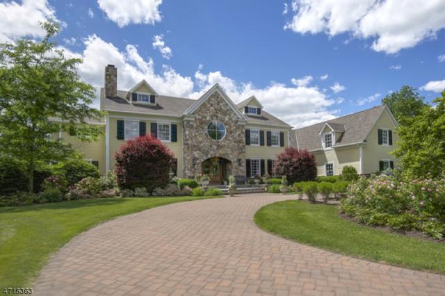 1200 Cowperthwaite Rd, Bedminster Twp., NJ 07921 (MLS #3394425) :: The Dekanski Home Selling Team
