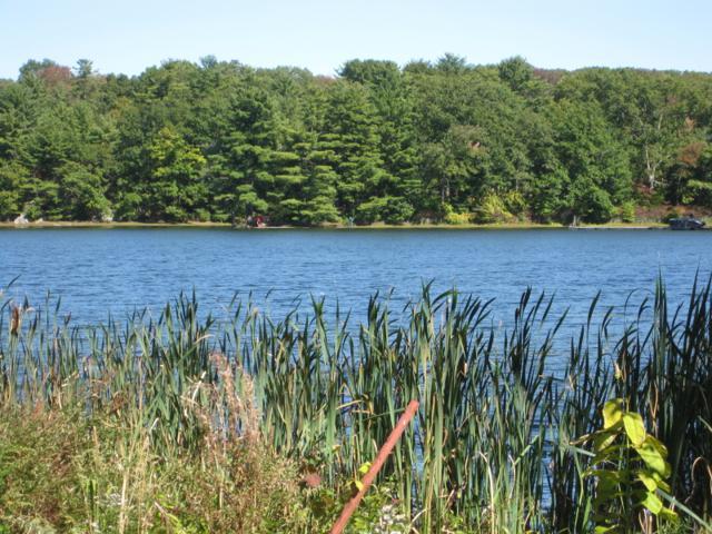 2 Woods Dr, Byram Twp., NJ 07821 (MLS #3394498) :: The Dekanski Home Selling Team
