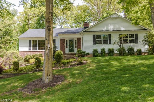 111 Lenape Lane, Berkeley Heights Twp., NJ 07922 (MLS #3394660) :: The Sue Adler Team