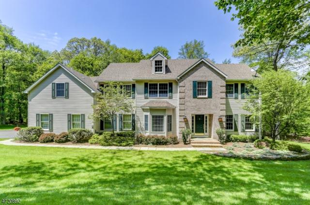 11 Continental Dr, Sparta Twp., NJ 07871 (MLS #3394668) :: The Dekanski Home Selling Team