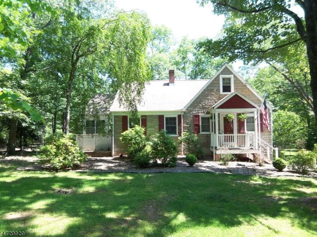 1535 Mountain Top Rd, Bridgewater Twp., NJ 08807 (MLS #3394700) :: The Dekanski Home Selling Team