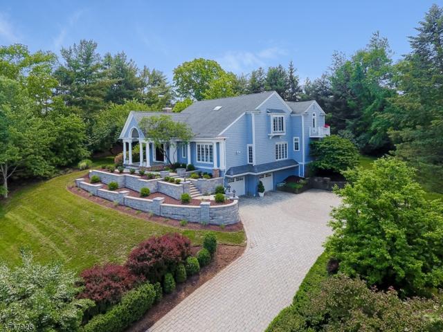 41 Eagle Nest Rd, Morris Twp., NJ 07960 (MLS #3394790) :: The Dekanski Home Selling Team