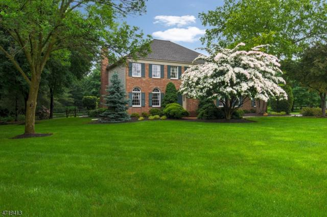 46 Carriage Trl, Montgomery Twp., NJ 08502 (MLS #3394972) :: The Dekanski Home Selling Team