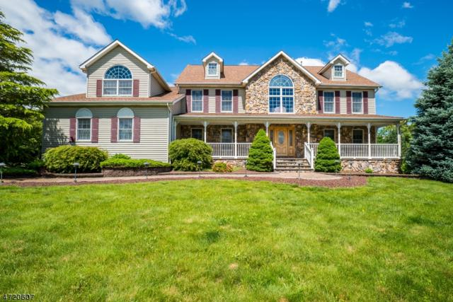 64 Chamberlain Dr, Hillsborough Twp., NJ 08844 (MLS #3394979) :: The Dekanski Home Selling Team