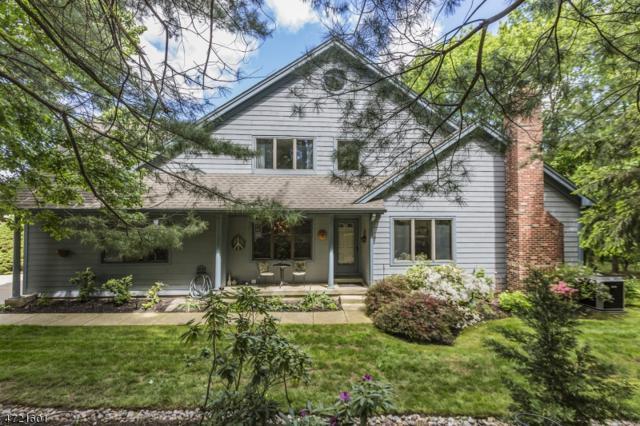 6 Woodstream Ct, Lambertville City, NJ 08530 (MLS #3395316) :: The Dekanski Home Selling Team