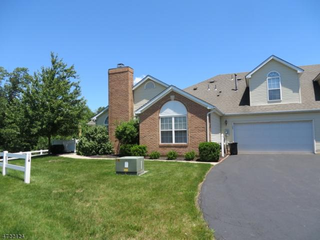 124 Chandler Ct #233, Hillsborough Twp., NJ 08844 (MLS #3395547) :: The Dekanski Home Selling Team