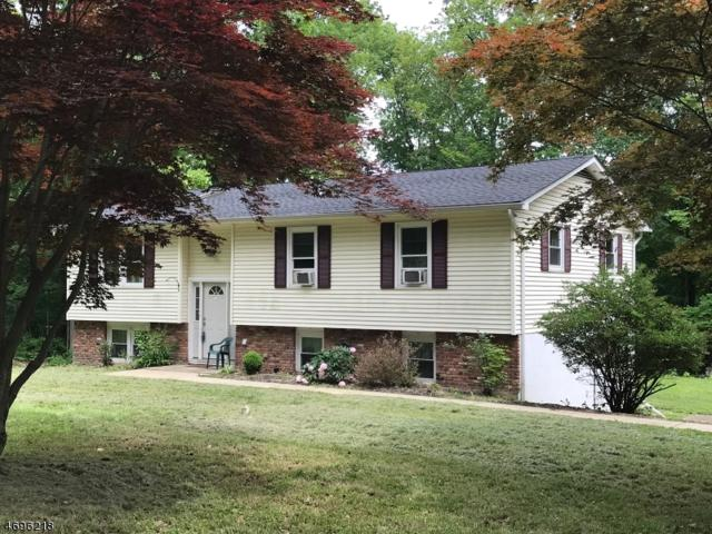 918 Edgewood Dr, Stillwater Twp., NJ 07860 (MLS #3395613) :: The Dekanski Home Selling Team