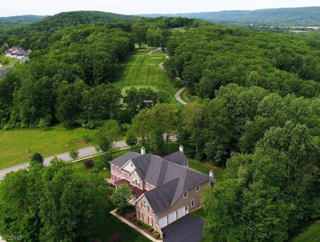 39 Ridgeline Dr, Washington Twp., NJ 07853 (MLS #3395817) :: The Dekanski Home Selling Team