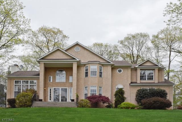1 Whispering Woods Dr, Mount Olive Twp., NJ 07836 (MLS #3395885) :: The Dekanski Home Selling Team
