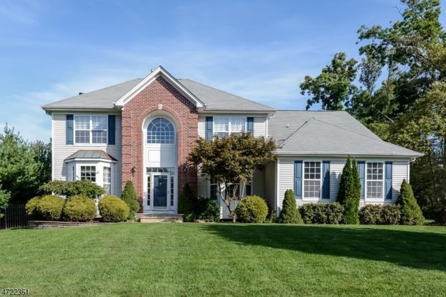 69 Saunders Ln, Mount Olive Twp., NJ 07840 (MLS #3395988) :: The Dekanski Home Selling Team