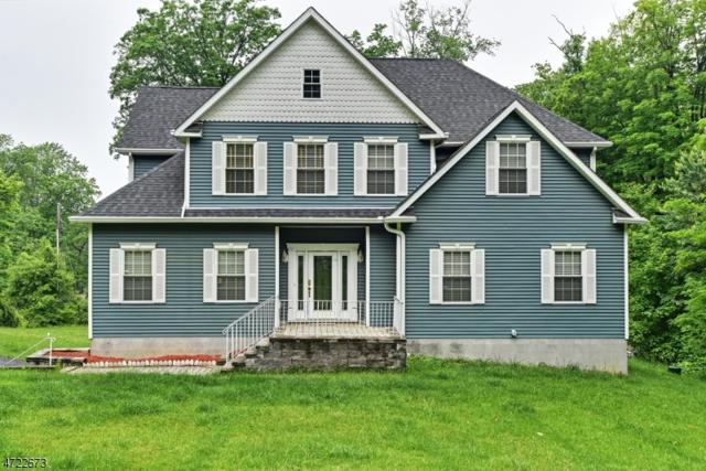 49 Greenhill Rd, Vernon Twp., NJ 07419 (MLS #3396001) :: The Dekanski Home Selling Team