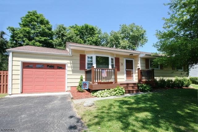 3 Brearly Crescent, Mount Olive Twp., NJ 07836 (MLS #3396002) :: The Dekanski Home Selling Team