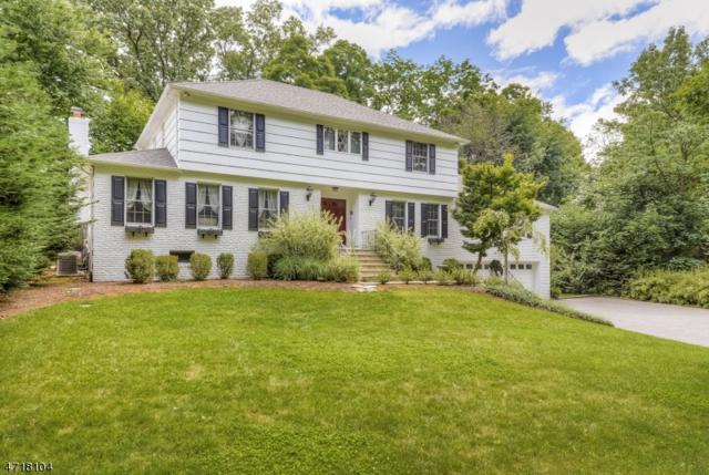 88 White Oak Ridge Rd, Millburn Twp., NJ 07078 (MLS #3396049) :: The Dekanski Home Selling Team