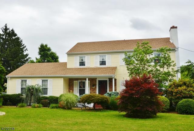 751 Route 518, Montgomery Twp., NJ 08558 (MLS #3396231) :: The Dekanski Home Selling Team