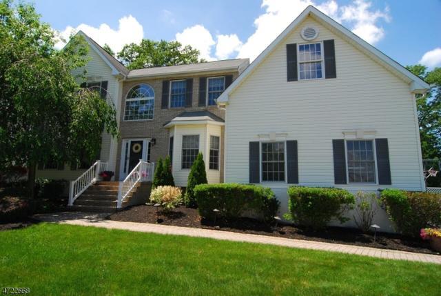 48 Fox Chase Ln, Roxbury Twp., NJ 07852 (MLS #3396285) :: The Dekanski Home Selling Team