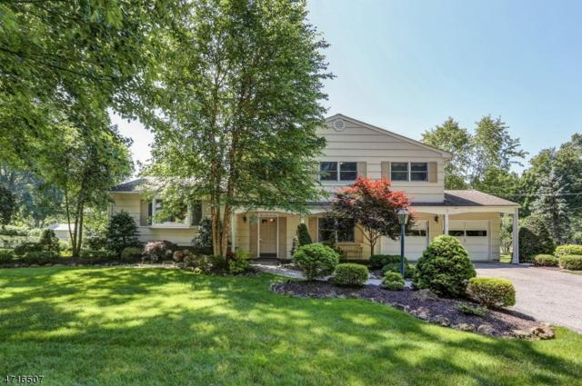 7 Camelot Way, Parsippany-Troy Hills Twp., NJ 07054 (MLS #3396319) :: The Dekanski Home Selling Team