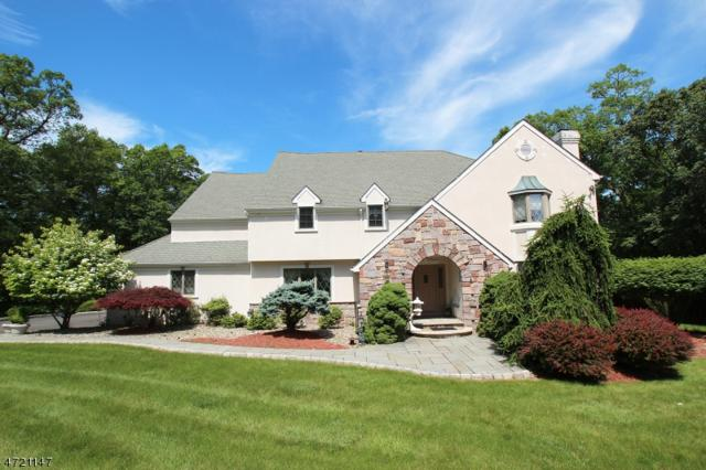 608 Emerald Trl, Bridgewater Twp., NJ 08836 (MLS #3396439) :: The Dekanski Home Selling Team