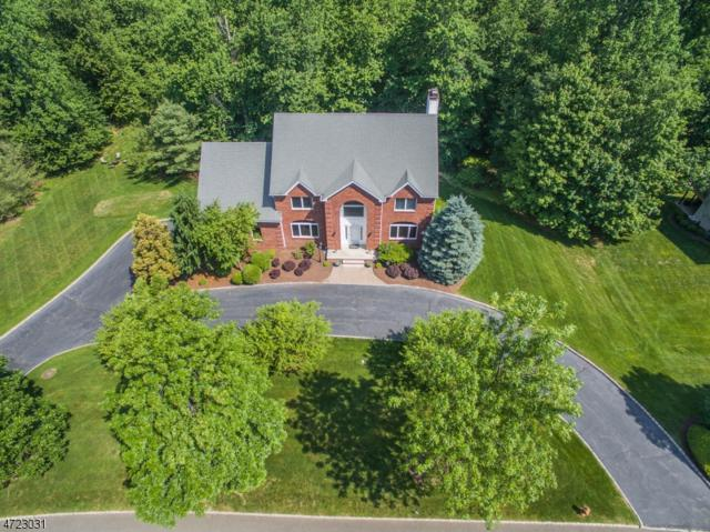 29 Arnold Dr, Randolph Twp., NJ 07869 (MLS #3396445) :: The Dekanski Home Selling Team