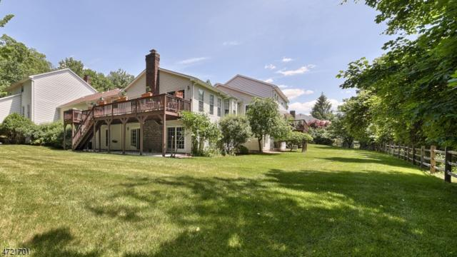 7 Tomahawk Dr, Wayne Twp., NJ 07470 (MLS #3396577) :: The Dekanski Home Selling Team