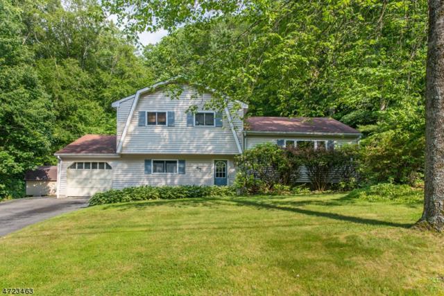 47 Morris Ave, West Milford Twp., NJ 07480 (MLS #3396721) :: The Dekanski Home Selling Team