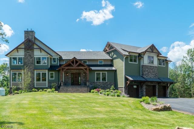 14 Roome Rd, Montville Twp., NJ 07082 (MLS #3396728) :: The Dekanski Home Selling Team
