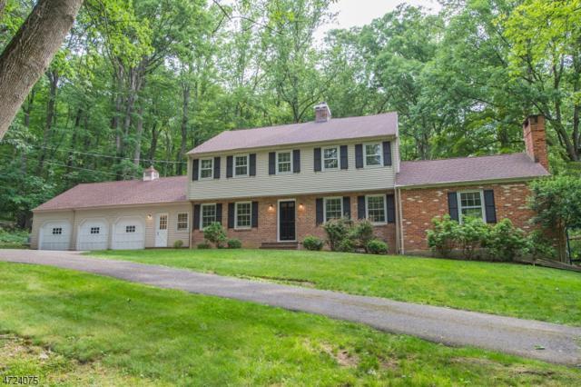 67 Tingley Rd, Mendham Twp., NJ 07960 (MLS #3397324) :: The Dekanski Home Selling Team