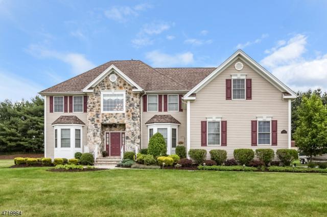 12 Saint Andrews Court, Mount Olive Twp., NJ 07836 (MLS #3397468) :: The Dekanski Home Selling Team