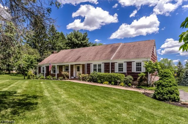 4 Mountain View Dr., Chester Twp., NJ 07930 (MLS #3397488) :: The Dekanski Home Selling Team