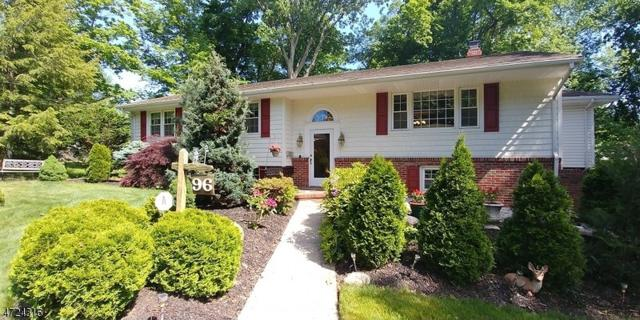 96 Amelia Dr, Clark Twp., NJ 07066 (MLS #3397546) :: The Dekanski Home Selling Team