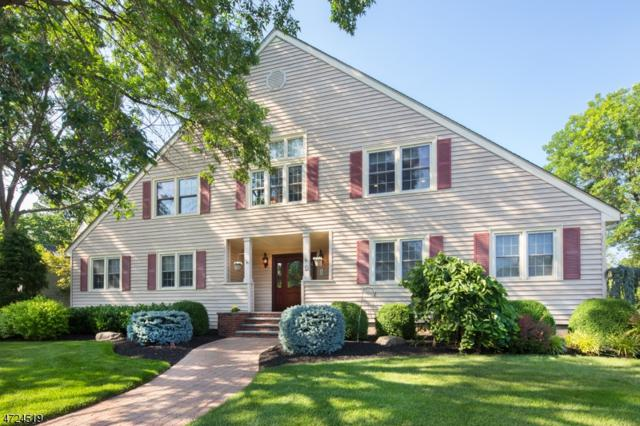 12 Conard Ct, Hillsborough Twp., NJ 08844 (MLS #3397696) :: The Dekanski Home Selling Team