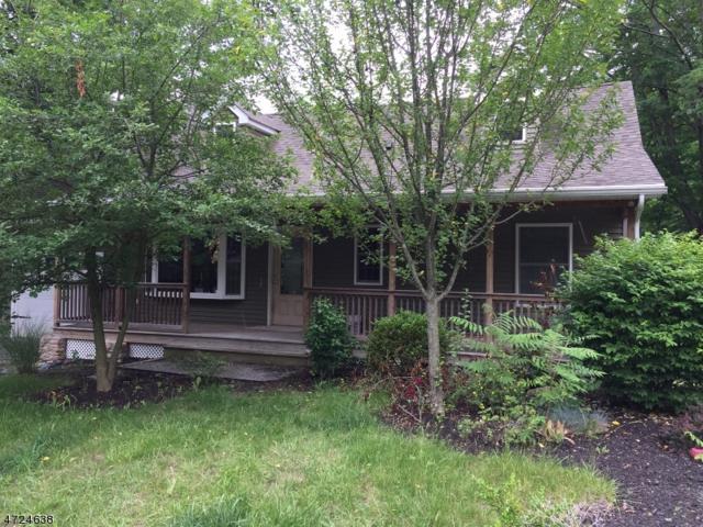 20 N Shore Dr, Wantage Twp., NJ 07461 (MLS #3397806) :: The Dekanski Home Selling Team
