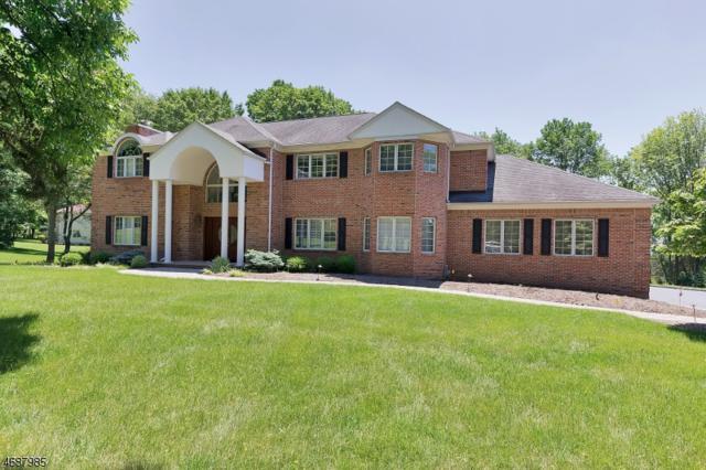 20 Blue Cliff Drive, Clinton Twp., NJ 08833 (MLS #3397815) :: The Dekanski Home Selling Team