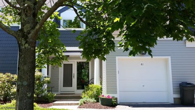 81 Cobbler Square, Sparta Twp., NJ 07871 (MLS #3397835) :: The Dekanski Home Selling Team