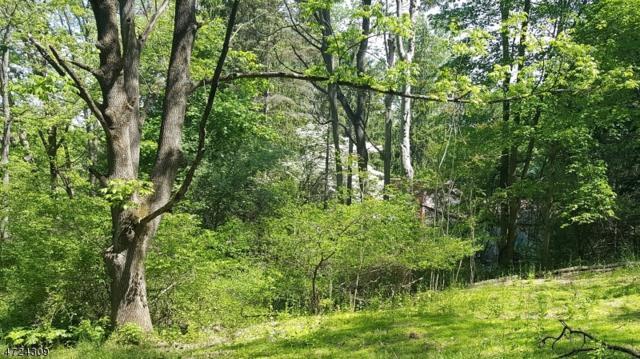 358 Mountain Lake Rd, Liberty Twp., NJ 07838 (MLS #3397920) :: The Dekanski Home Selling Team