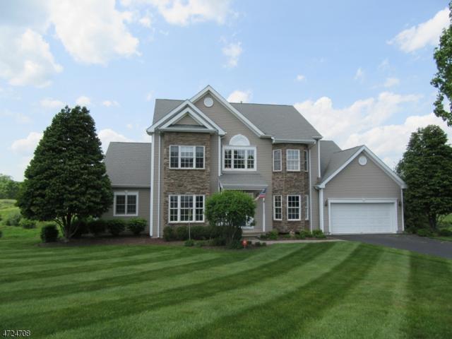 3 Pine Valley Rd, Fredon Twp., NJ 07860 (MLS #3398090) :: The Dekanski Home Selling Team