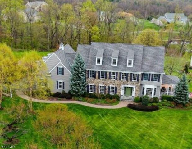 24 Ramsey Rd, Clinton Twp., NJ 08833 (MLS #3398132) :: The Dekanski Home Selling Team
