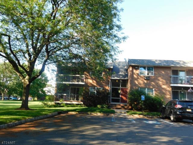807 Eves Dr, 1L 1L, Hillsborough Twp., NJ 08844 (MLS #3398227) :: The Dekanski Home Selling Team