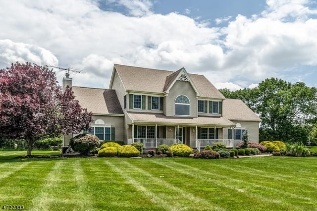 232 Johnson Rd, Readington Twp., NJ 08889 (MLS #3398307) :: The Dekanski Home Selling Team