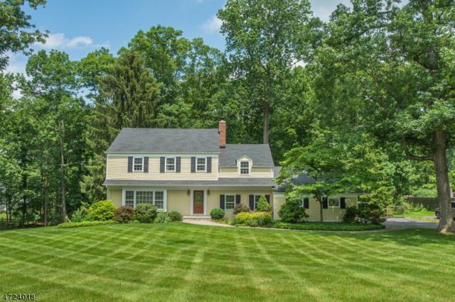118 Penwood Rd, Bernards Twp., NJ 07920 (MLS #3398347) :: The Dekanski Home Selling Team